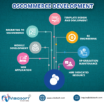 Ecommerces Development