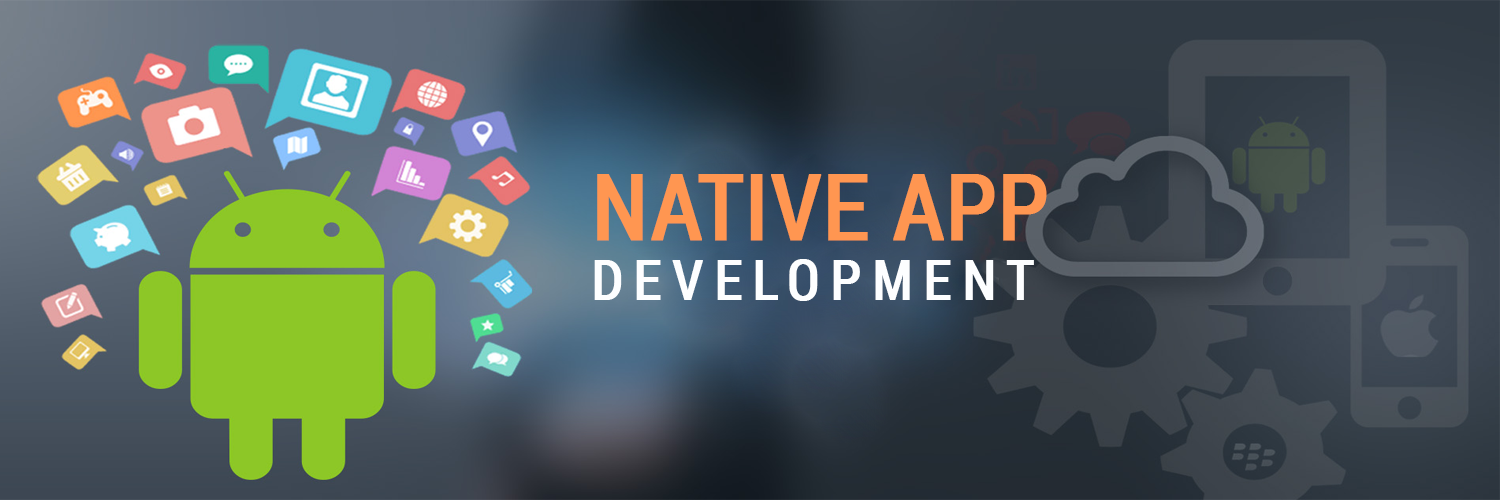 Vibidsoft- Native Mobile App Development Company